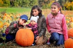 Vier junge kleine Mädchen im Kürbisflecken lizenzfreie stockfotos