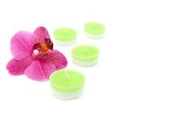 Vier kaarsen met een roze orchidee Royalty-vrije Stock Afbeeldingen