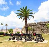 Vier Kanonnen onder een Palm Royalty-vrije Stock Afbeeldingen