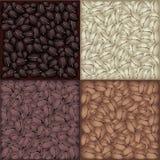 Vier Kleuren van de Geroosterde Achtergrond van Koffiebonen Stock Afbeeldingen