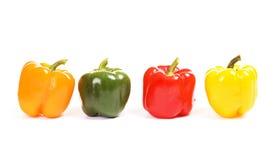 Vier kleurrijke paprika Stock Afbeelding