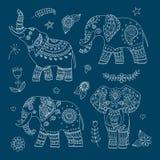 Vier krabbel vectorolifanten en bloemenelementen voor ontwerp Stock Foto's