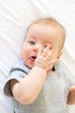 Vier maanden oud baby Royalty-vrije Stock Foto's