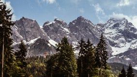 Vier majestätische Spitzen von Alpen mit immergrünen Bäumen und einem blauen Himmel Stockbild