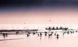 Vier Mann Kanu, das hereinkommt auf den Strand zu setzen Lizenzfreies Stockfoto