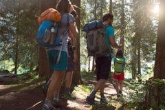 Vier Mann und Frau, die entlang Wanderwegweg im Waldholz während des sonnigen Tages gehen Gruppe Freundleutesommer stockfoto