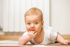 Vier Monate alte Schätzchen Lizenzfreies Stockfoto