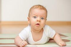 Vier Monate alte Schätzchen Stockfotos