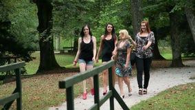 Vier mooie vrouwen in hoge hielen walkin in park stock videobeelden