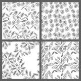 Vier nahtlose tropische Schwarzweiss-Blatt-Blumenvektor-Muster-Hintergrund-Tapeten-Design Stockfotografie
