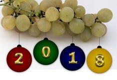 Vier nieuw jaar 2009 Royalty-vrije Stock Foto's