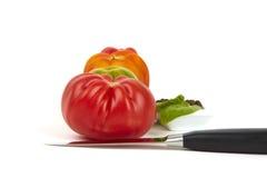 Vier organische Tomaten in einer Reihe Stockfotografie