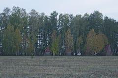 Vier oude huizen in het hout Royalty-vrije Stock Foto