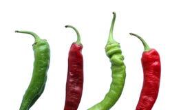 Vier peper Stock Afbeelding