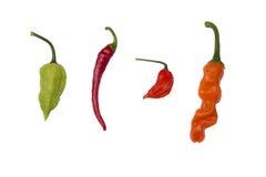 Vier peper die op wit wordt geïsoleerdh Stock Fotografie