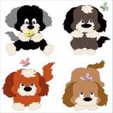 Vier puppy Stock Fotografie