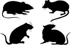 Vier rattensilhouetten Stock Afbeeldingen