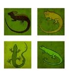 Vier reptielen vector illustratie