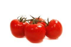 Vier rijpe organische tomaten die op wit worden geïsoleerdl Stock Foto