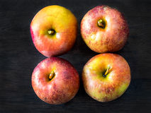 Vier rode appelen, Belle de Boskoop stock fotografie