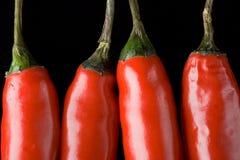 Vier roodgloeiende peper Royalty-vrije Stock Foto's