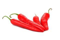 Vier roodgloeiende peper Chili Royalty-vrije Stock Fotografie