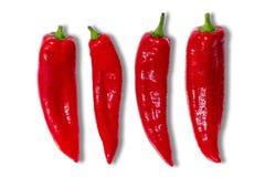 Vier roodgloeiende Spaanse peperspeper Stock Foto's