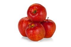 Vier rote Äpfel auf Weiß Stockfotografie