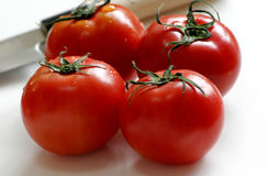 Vier rote Tomaten Stockfotografie