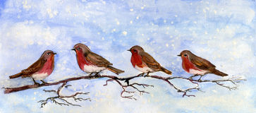 Vier Rotkehlchen auf einem Zweig mit einem Snowy-Himmel stock abbildung