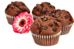 Vier Schokoladenmuffins und -blume stockfoto