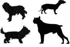 Vier schwarze lokalisierte Hunde Stockbild