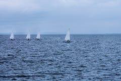 Vier Segelboote auf dem Meer Lizenzfreies Stockbild