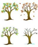 Vier seizoenenâ colorfull bomen vector illustratie