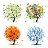 Vier seizoenen - de lente, de zomer, de herfst, de winterboom Royalty-vrije Stock Fotografie