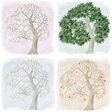 Vier seizoenen van appelboom vector illustratie