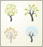 Vier seizoenen van een boom Royalty-vrije Stock Foto