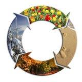 Vier seizoenen van het jaar stock foto's