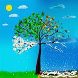 Vier seizoenen van kersenboom stock illustratie