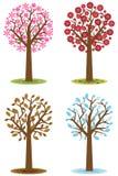 Vier seizoenenbomen Stock Fotografie