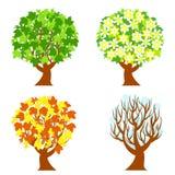 vier seizoenenbomen Royalty-vrije Stock Fotografie