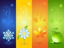 Vier seizoengebonden achtergronden Royalty-vrije Stock Afbeeldingen