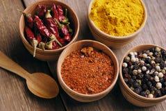 Vier soorten kruiden stock afbeelding