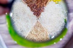 Vier soorten rijst, wit geblancheerde bruine wilde ronde liggen in de ruwe schotel Stock Afbeelding
