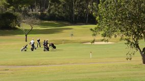 Vier speelgolf van men in Majorca stock video