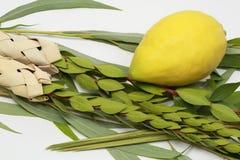 Vier Spezies vom jüdischen Feiertag von Sukkoth Lizenzfreie Stockfotografie