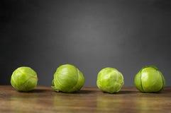 Vier spruitjes op een rij Royalty-vrije Stock Fotografie