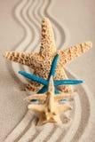 Vier Starfish im Sand Lizenzfreies Stockfoto