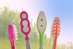 Vier tandenborstels die het ochtendlicht van een verduisterd venster onder ogen zien Royalty-vrije Stock Fotografie