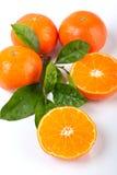 Vier Tangerinen mit Blättern lizenzfreie stockfotografie